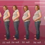 Беременность: современный подход к «особому» состоянию женщины