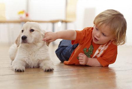 Собака и новорожденный ребенок...