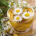 Самые полезные для здоровья растения