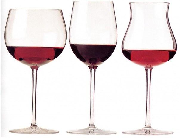 В каких бокалах подают вино