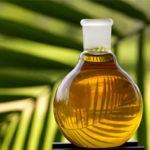 О пользе пальмового масла