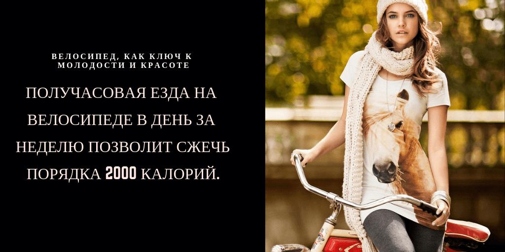 езда на велосипеде полезна для нашего организма