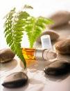 Косметология: уход за кожей. Бабушкин рецепт или инновационный крем от морщин
