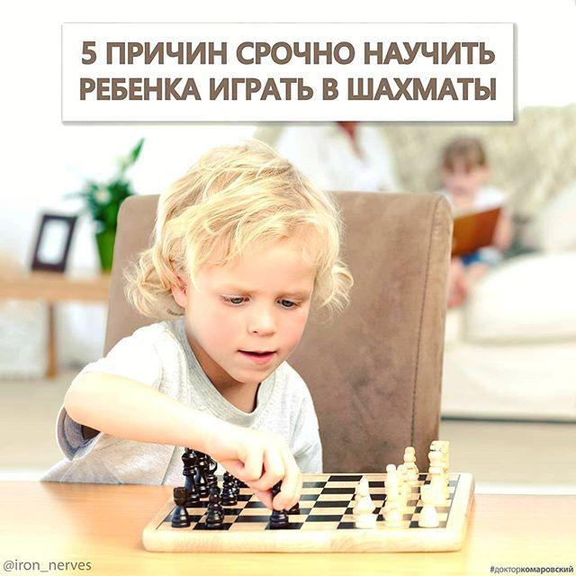 5 причин срочно научить ребенка играть в шахматы