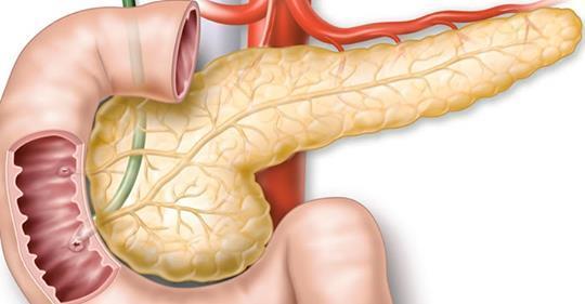Все то что мы не знали о поджелудочной железе! 5 советов как следить за поджелудочной