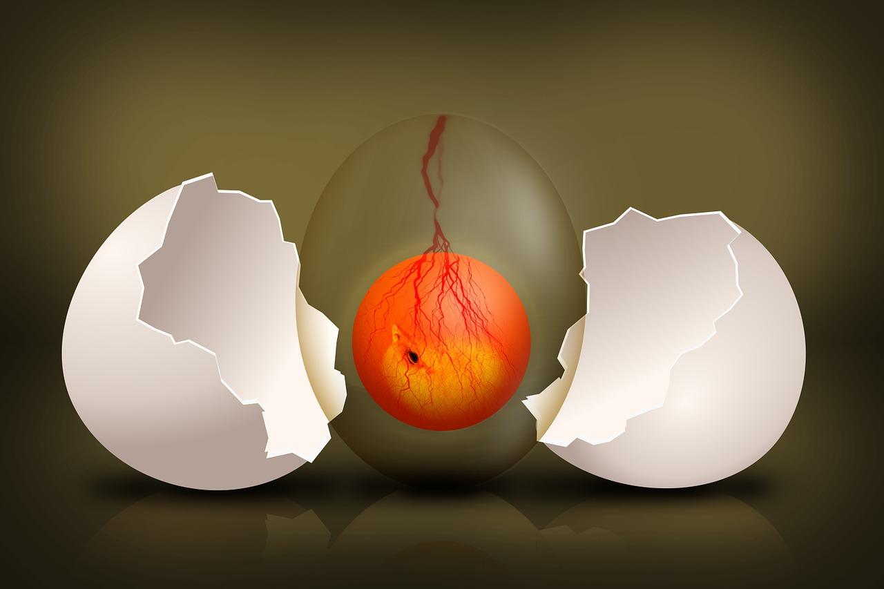 Начните есть два яйца в день, и эти девять изменений произойдут в вашем теле!